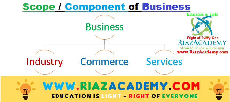 Define Business. Discuss the Scope or component of the business?