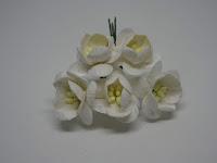 http://www.scrappasja.pl/p20489,ilc-f-cherry01-kwiat-wisni-biale-5sztuk.html