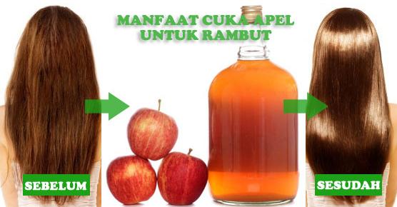 Manfaat Cuka Apel serta Cuka Putih untuk Rambut