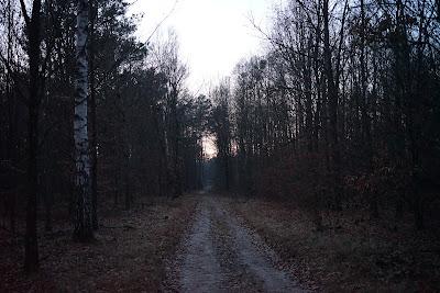 opodal Truskawia po zachodzie Słońca