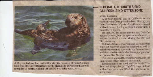 California otters are now free from any territorial restrictions