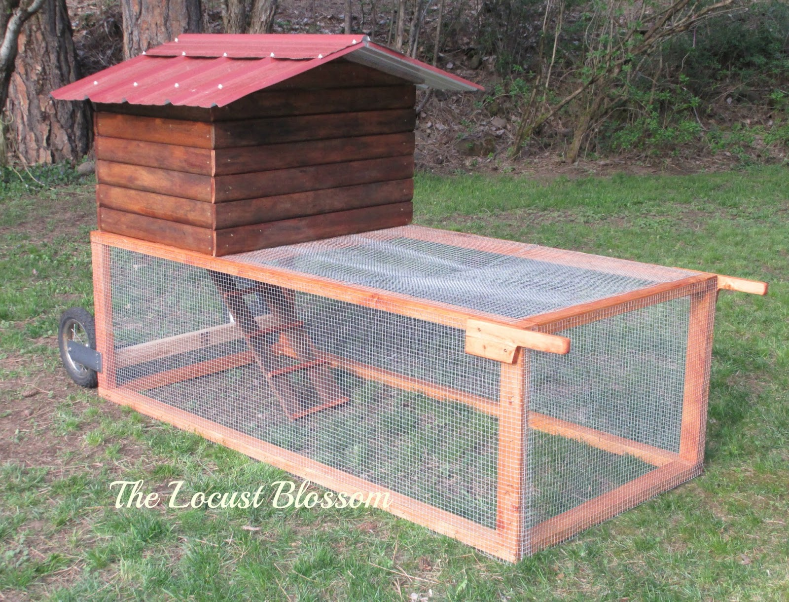 The Locust Blossom The 42 Chicken Tractor