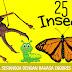 25 Nama Serangga Dalam Bahasa Inggris Dan Artinya