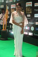 Lakshmi Prasanna in Transparent Saree Spicy Sleeveless Choli at IIFA Utsavam Awards 2017  Day 2  Exclusive 19.JPG