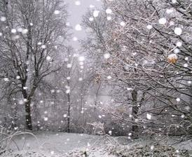 Foto de bolas de nieve
