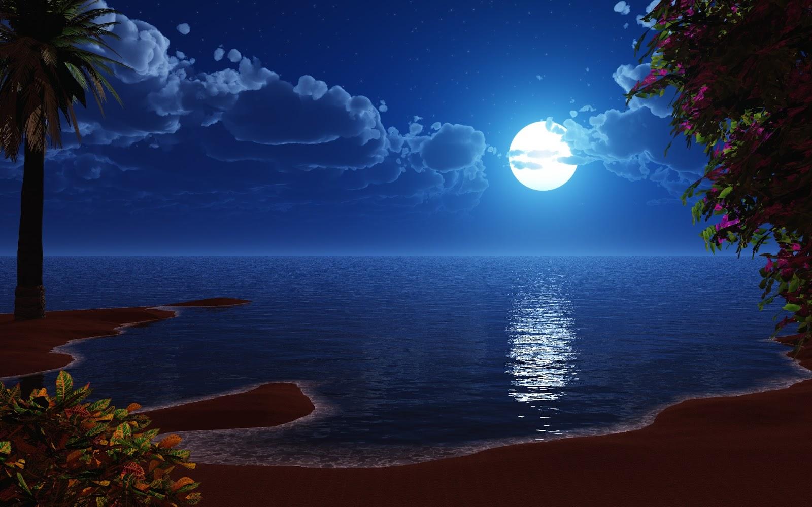 reflejo de la luna en la playa