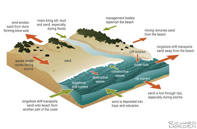 diagram of How a beach forms