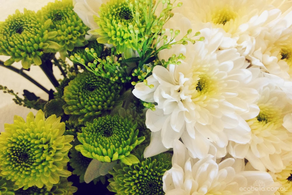 green and white chrysanthemums