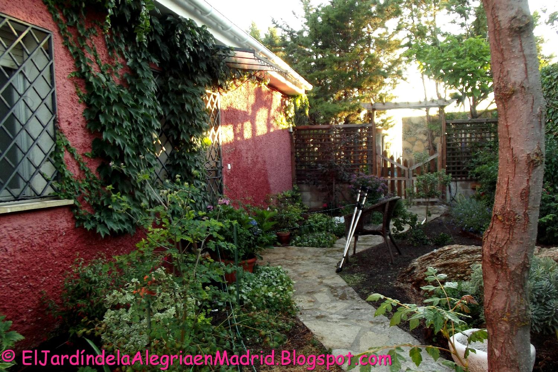 El jard n de la alegr a parra virgen trepadoras que protegen del sol y aportan frescor a las - El jardin del sol ...
