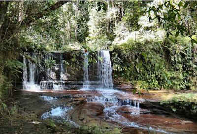 Taman Nasional Perbukitan Lambir