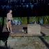 Ξεκίνησαν οι εντάσεις επιβίωσης στο Survivor 2 - Η Σαμαρίνου, ο Κρητικός και... η καρύδα (video)