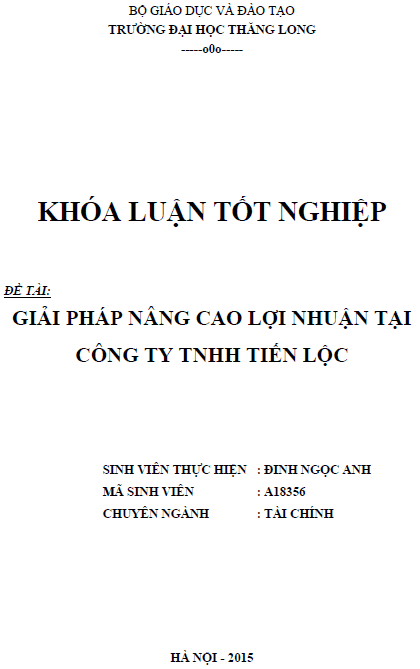 Giải pháp nâng cao lợi nhuận tại Công ty TNHH Tiến Lộc