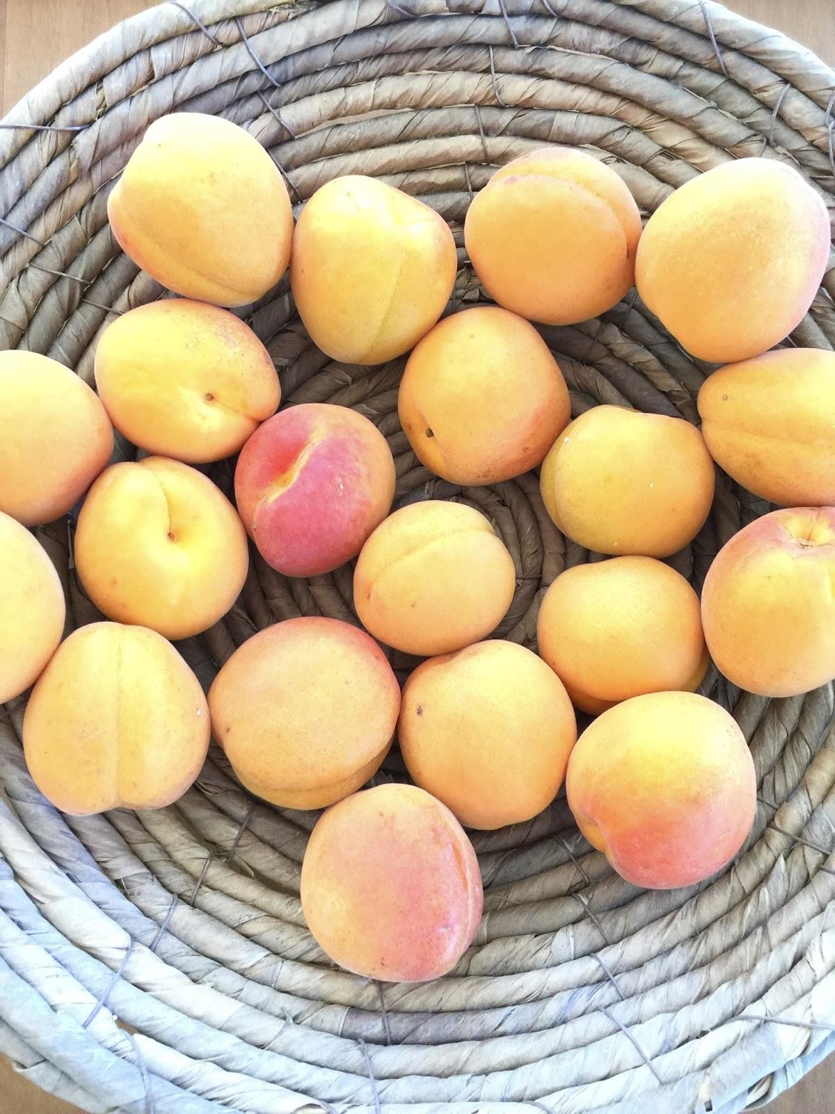 Aprikosenmarmelade Mit Ingwer : views by a aprikosenmarmelade mit ingwer ~ Lizthompson.info Haus und Dekorationen