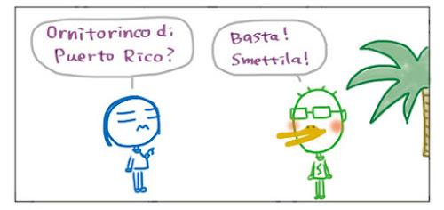 Ornitorinco di Puerto Rico? Basta! Smettila!