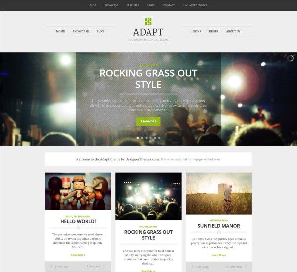 Adapt WordPress theme for pro bloggers