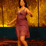 Lakshmi Rai Hot and Spicy Skirt