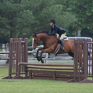 http://theambitiousequestrian.blogspot.com/2016/08/adventures-in-leasing.html