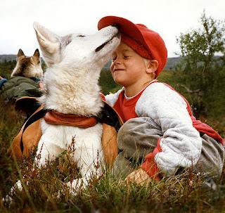 as pet-dog- dog breeds