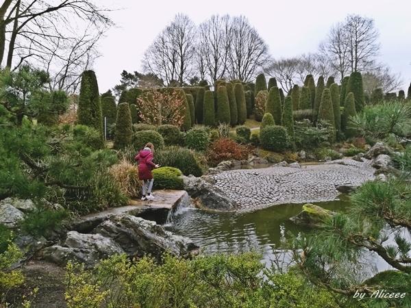 The-Japanese-garden-Bonn-Germany