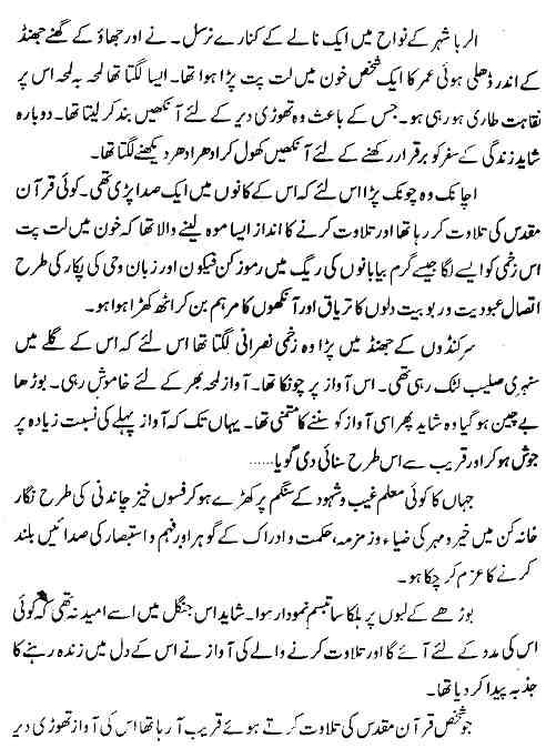 Sultan Noor Uddin Zangi Novel