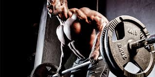 workout for muscle mass