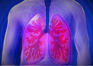 Chronic Obstructive Pulmonary Disease,copd treatment,symptoms of Chronic Obstructive Pulmonary Disease