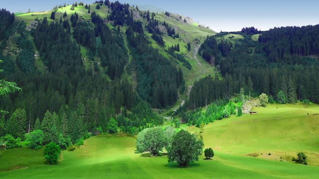 Hình nền đẹp chủ để thiên nhiên
