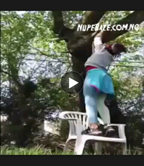 Funny Girl Fall From Tree , Download Funny Girl Comedy Video , Download Funny Africa Videos , Comedy Videos Download , Comedy Videos In NIgeria , Comedy Movies , Africa n Comedy Movies , Funny Comedy
