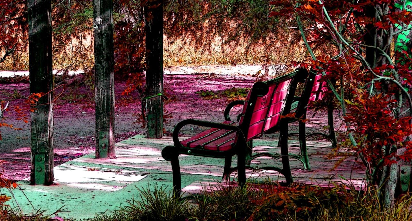 Bench Autumn Nature Wallpapers Hd Desktop Barong Wallpapers