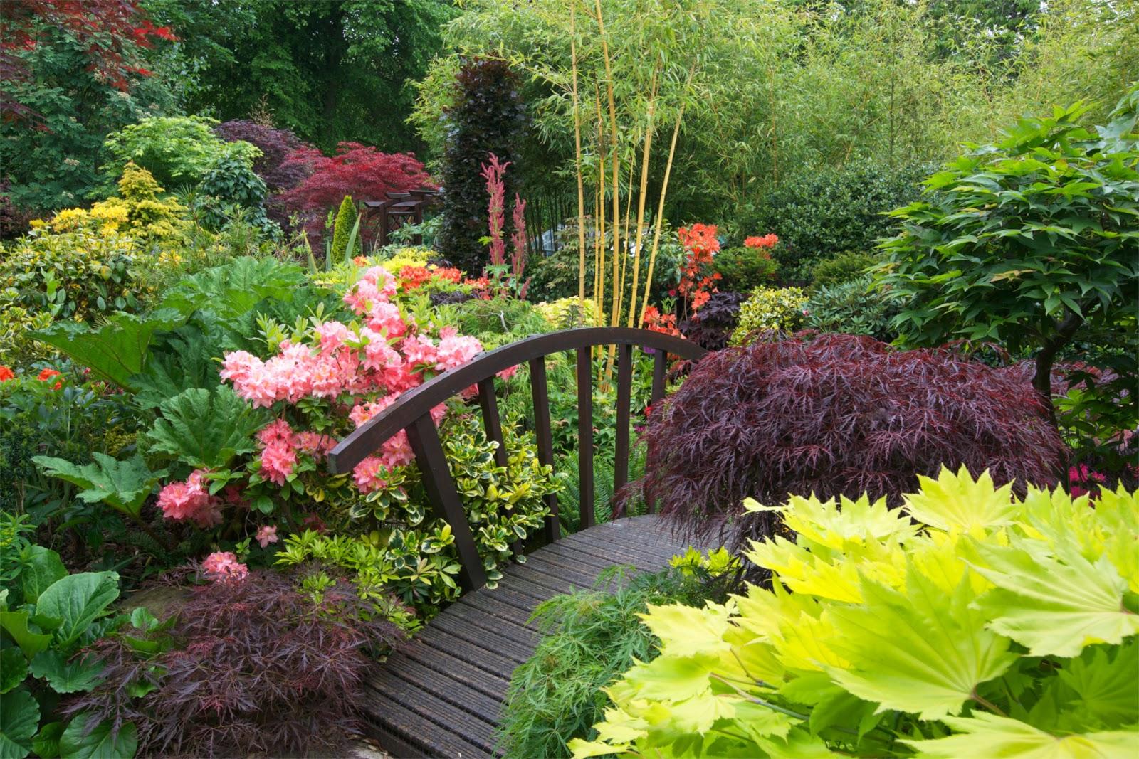 Drelis Gardens: Four Seasons Garden - The most beautiful ... on Beautiful Backyard  id=34866