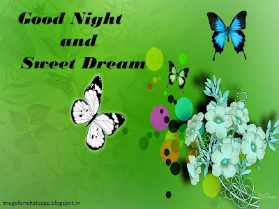 Good Night Sweet Dreams