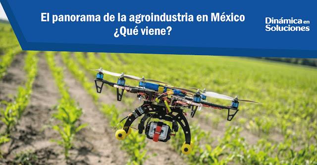el_panorama_de_la_agroindustria_en_mexico