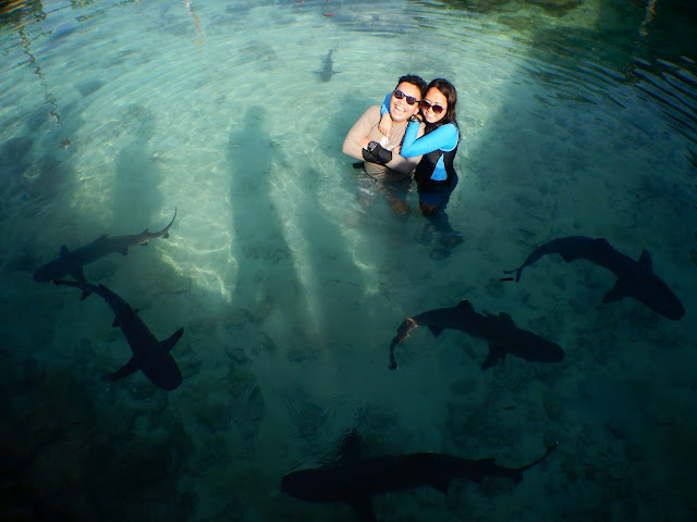 Biro Tour Travel Promo Paket Wisata Ke Pulau Karimunjawa Murah l 085740601194