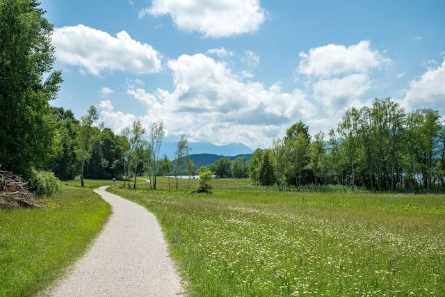 Staffelsee-Rundweg  Wanderung bei Murnau – Das Blaue Land 11
