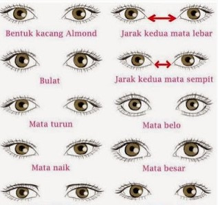 10 the meaning of forms of human eyes Reflect the personality of a person
