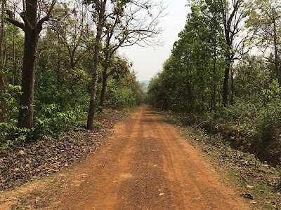 Kuldiha Wildlife Sanctuary,Odisha