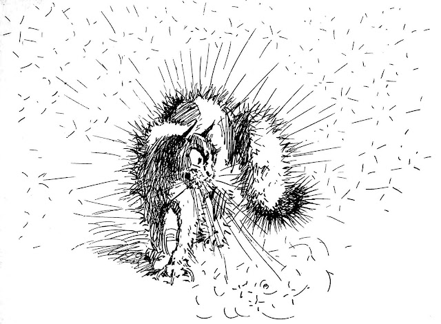 A.B. Frost illustration 1881 of angry cat