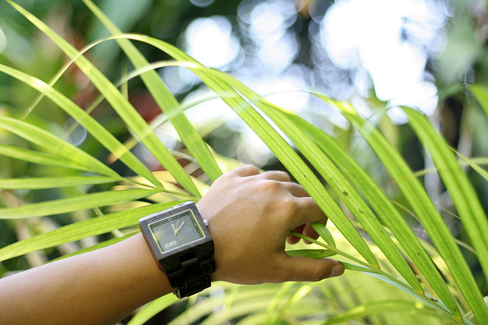Deluxshionist Product Review - Jord Wood Watches Delmar Series