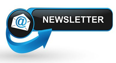 implement newsletter feature