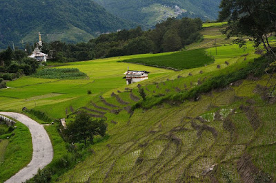 Arunachal Pradesh Holds 35 % of Country's Graphite Reserves