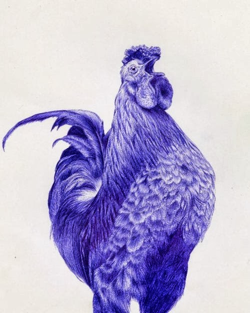 14-Rooster-Sarah-Esteje-ABADIDABOU-Hyper-realistic-Ballpoint-Pen-Animals-www-designstack-co