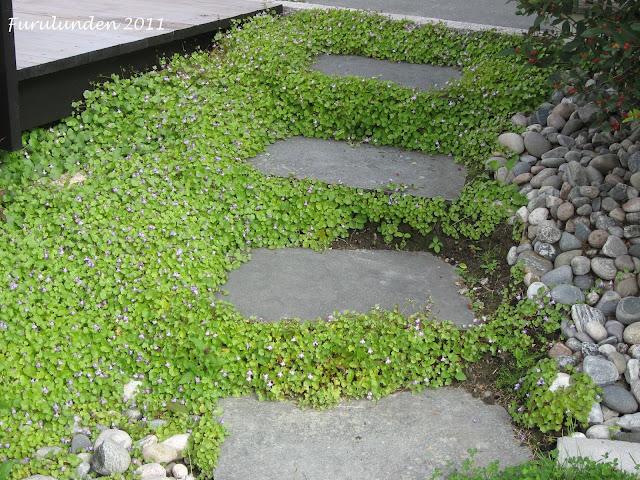 Mellomstore elvestein i trappegang