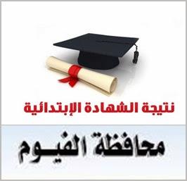 نتيجة الشهاده الابتدائيه محافظة الفيوم الترم الاول 2014
