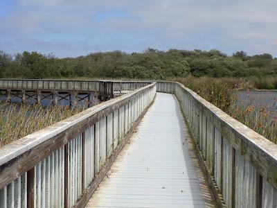 The boardwalk on Oso Flaco Lake