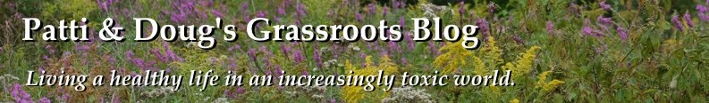 Patti and Doug's Grassroots Blog