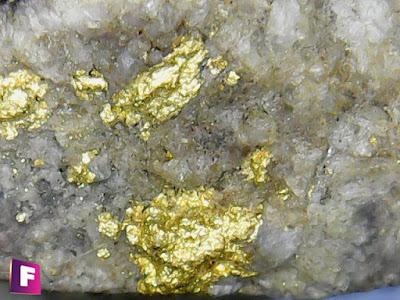 oro-nativo-minerales-bajo-el-microscopio