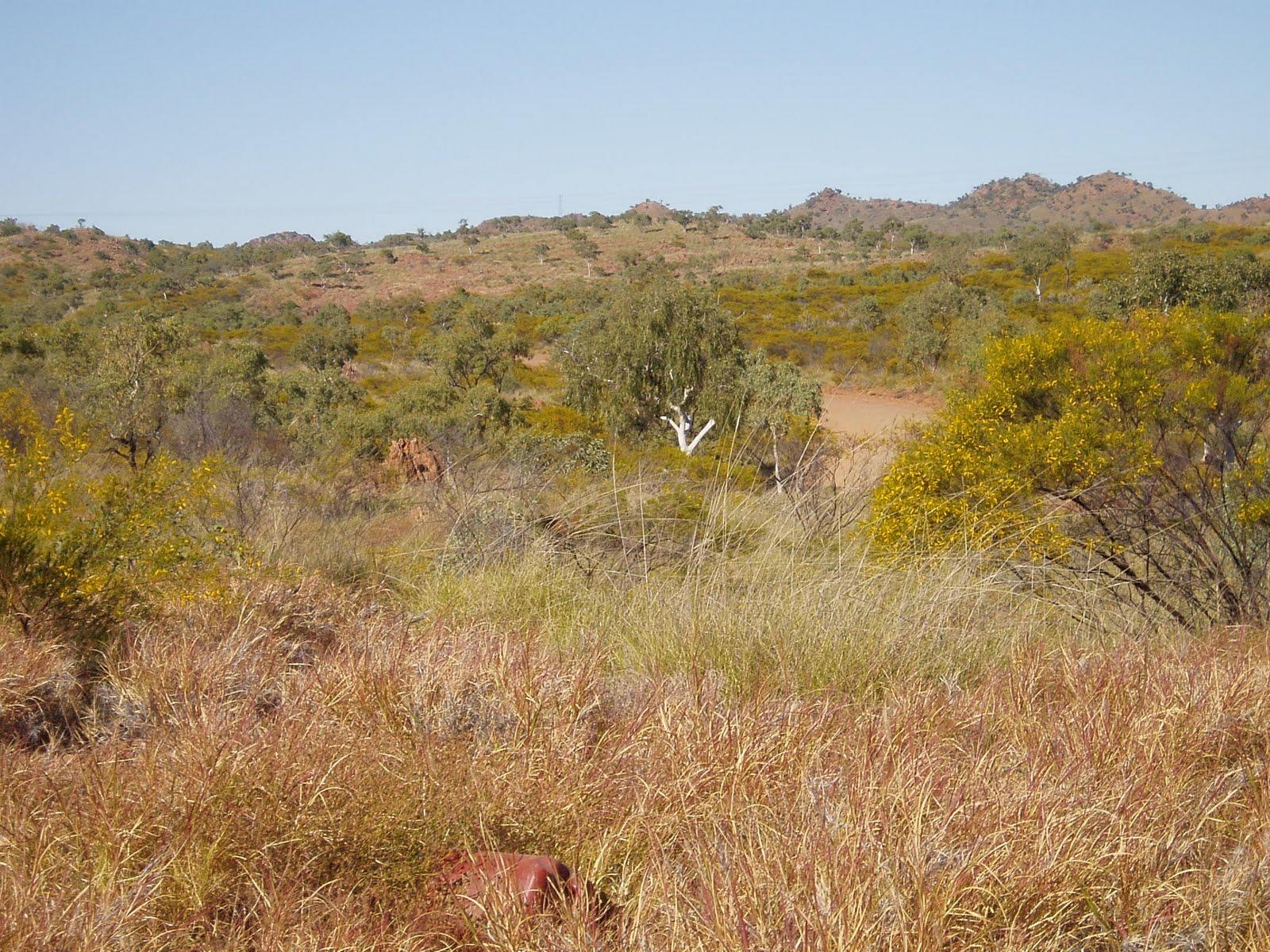 The Travelling Novocastrians Landscape Before Entering Mt