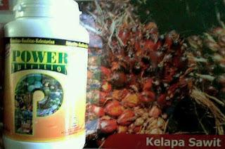 distributor pupuk sawit nasa sikan