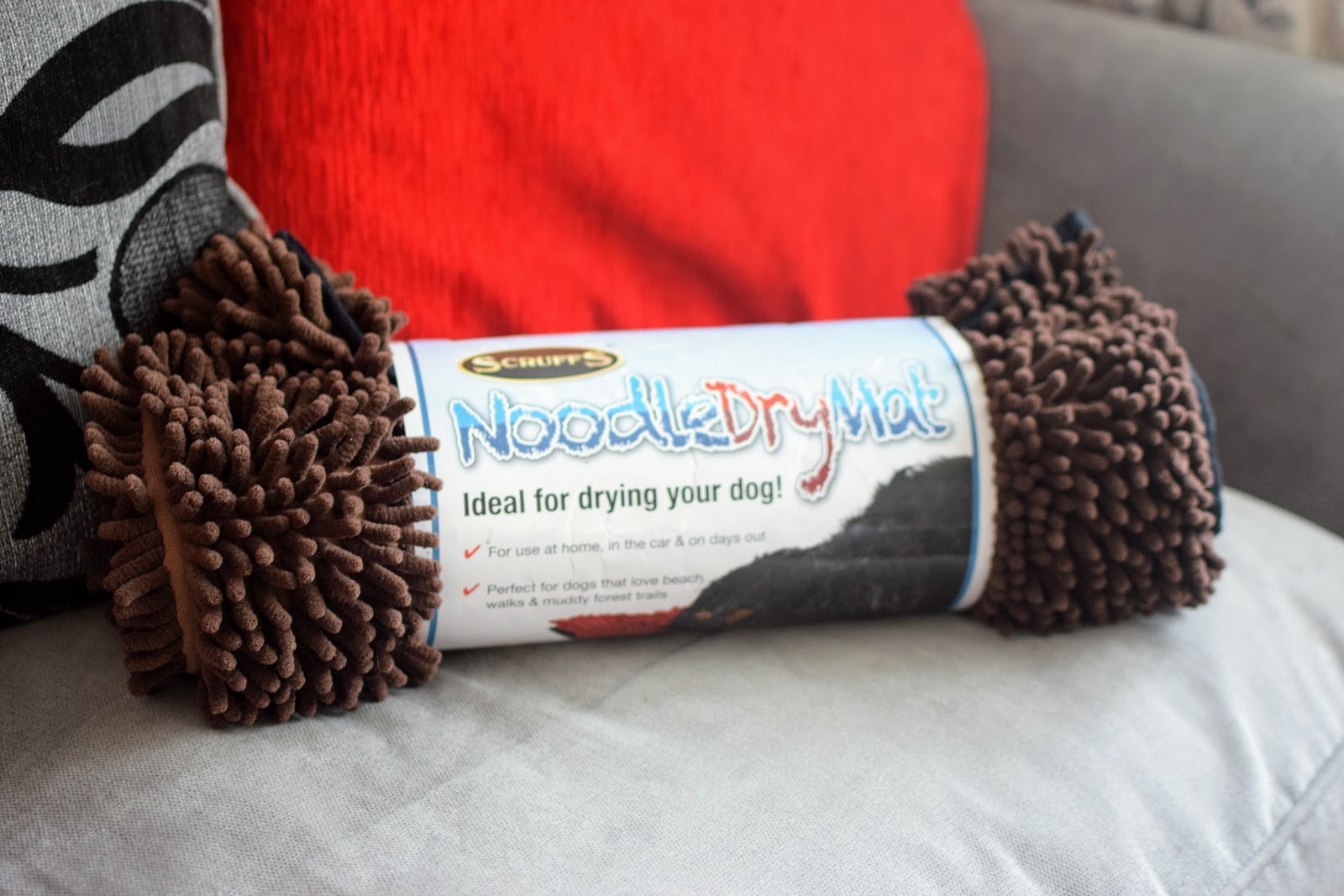 , Toby Dog: Walks and Water Play + Win A Scruffs Noodle Dry Mat