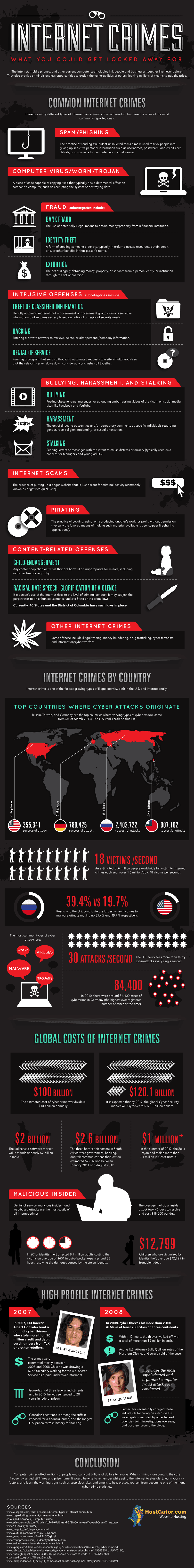 Internet Crimes #infographic